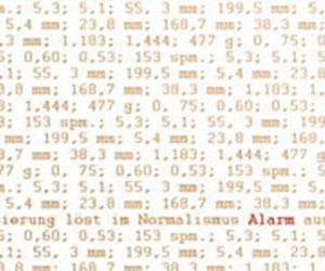 Denormalisierung löst im Normalismus Alarm aus